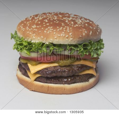 Fast Food Burgher Lg