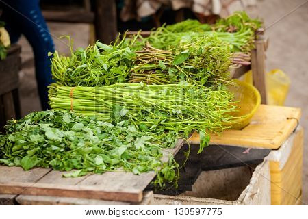 Selection of fresh green herbs and vegetables. Traditional thai market.