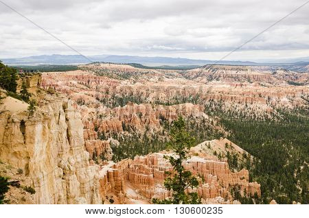 Hoodoos with pine trees at Bryce Canyon National Park in Utah.