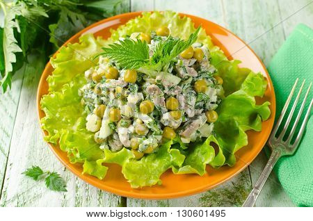 Fresh salad vegetables beef and nettles. Salad rich in vitamin C carotene and protein