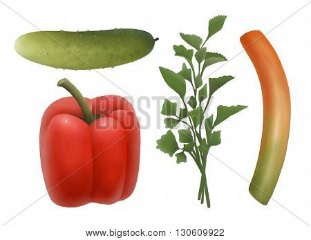 Hand-drawn cucumber, sweet pepper; parsley and leek, isolated on white background