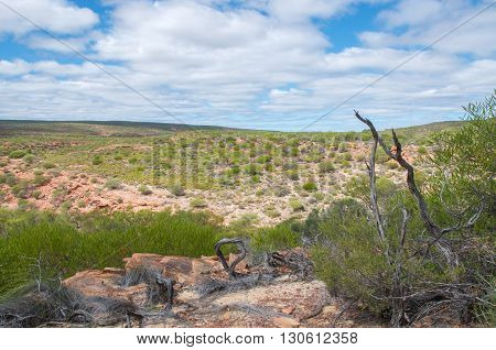Kalbarri National Park landscape with red sandstone and native flora in Kalbarri, Western Australia under a blue sky with clouds.