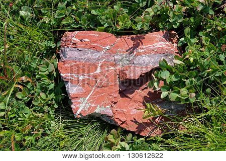 reddish stone on grass