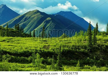 Mountains of Alaska in summer