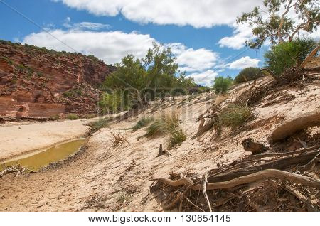 Sandy vegetated landscape in the valley of the Murchison River gorge with sandstone cliffs in Kalbarri National Park with native plants under a blue sky with clouds in Western Australia.