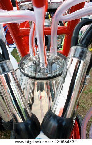 metal Pipes on mechanized milking equipment .
