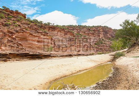 Details of the red and white banded tumblagooda sandstone cliffs in the valley of the Murchison River gorge during a drought in Kalbarri National Park with native plants under a blue sky with clouds in Western Australia.