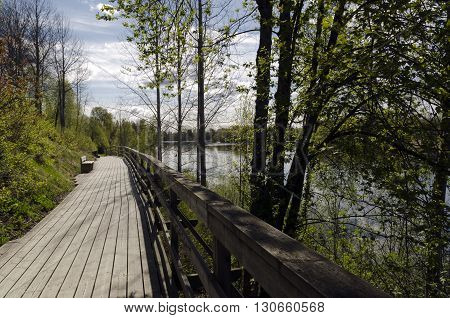 Boardwalk in wood adjacent to the river and with a wooden bench on from the North of Sweden.