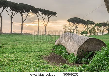 Italy, Rome, Acquedotto Claudio - Sunrise at the Aqueducts Park