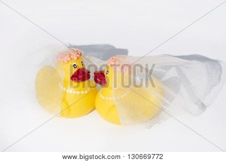 Rubber Ducky Gay Wedding