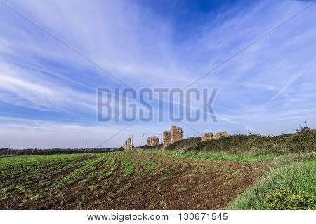 Italy, Rome, Acquedotto Claudio - Cultivated fields and ruins in the Aqueducts Park