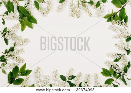 Frame of white flowers and green leaves on the white background. Top view, flat lay