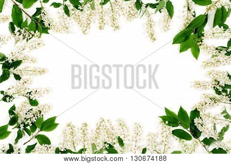 Frame of white flowers and green leaves isolated on the white. Top view, flat lay.