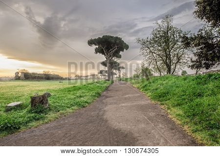 Italy, Rome, Acquedotto Claudio - Early morning at the Park of the Aqueducts