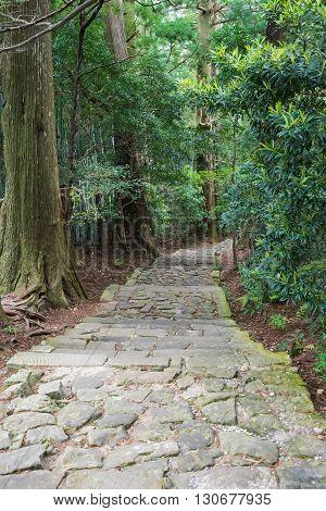 Daimon-zaka slope of Kumano Kodo in Wakayama, Japan.  The Kumano Kodo was registered as UNESCO World Heritage site in 2004.
