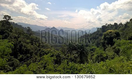 Landscape of Khao Sok National Park in Thailand, most ancient jungle in the world