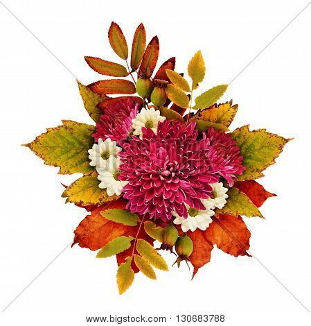 Autumn bouquet with aster flowers and dry leaves isolated on white