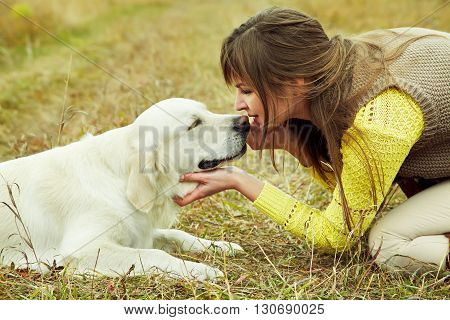 Young golden retriever for a walk with his owner. Dog breed labrador outdoors