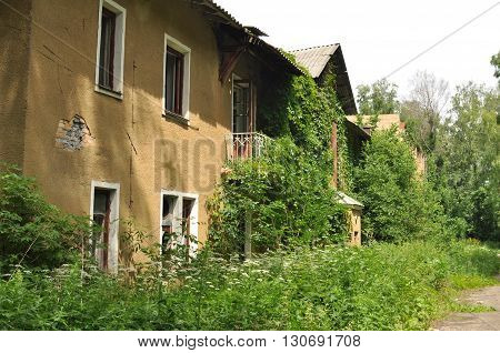 Old abandoned house entangled with vines overgrown green grapes