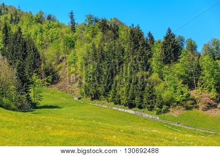 Trees and railway on the foot of Mt. Stanserhorn in Switzerland in the beginning of May. Mt. Stanserhorn is a mountain located in the Swiss canton of Nidwalden near the town of Stans.