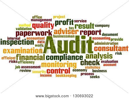 Audit, Word Cloud Concept 4