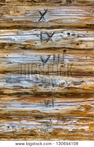 wall of wooden house with marked logs