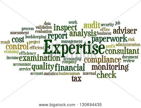 Expertise, Word Cloud Concept 2