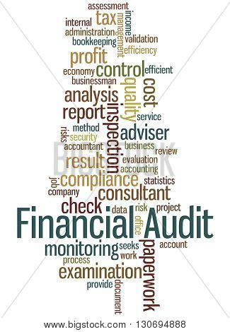 Financial Audit, Word Cloud Concept 3