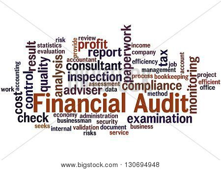 Financial Audit, Word Cloud Concept 8