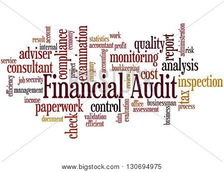 Financial Audit, Word Cloud Concept 9