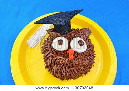 A chocolate owl cupcake wears a graduation cap decoration. Blue background is a vinyl tablecloth.