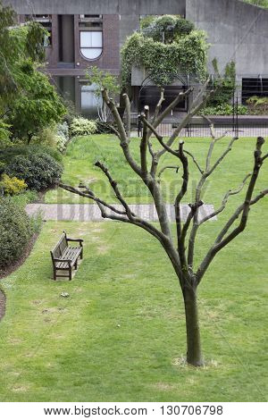 London England - May 19 2016: Garden and Playground in Barbican centre in London England.