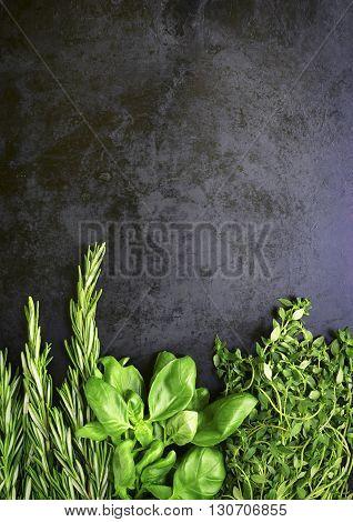 Bunchs Of Mediterranean Herbs.