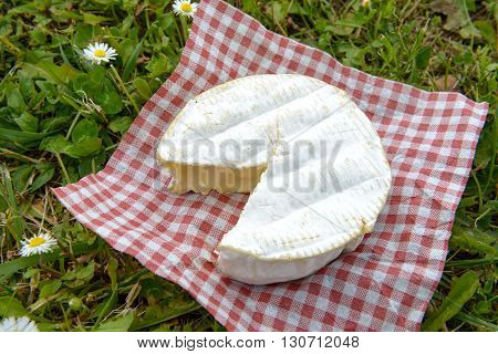 a camembert on a red squares tablecloth on grass