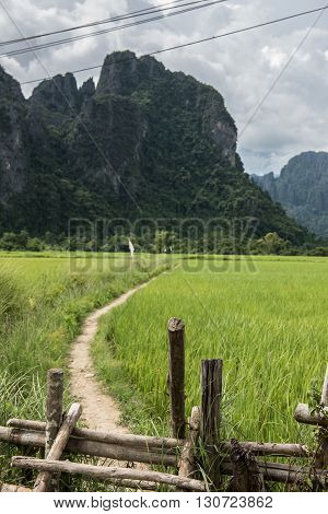 View of the karst mountain and mud road through lush greeneries in Vang Vieng. Vang Vieng is not only beautiful, but is also one of the hottest partying destinations for tourists.