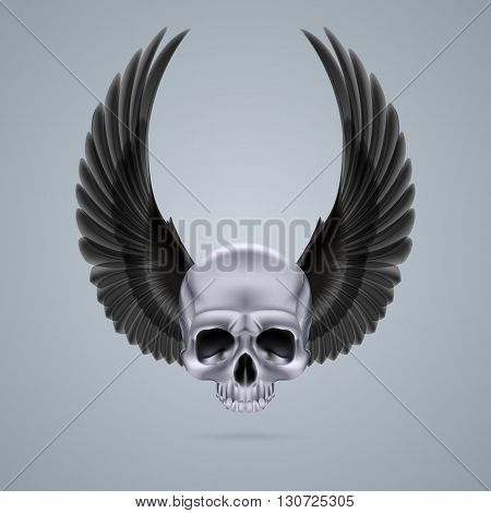 Metal chrome skull with two raised crow wings and no jaw bone.
