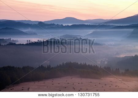 Misty Dreamy Landscape At Begining Of November. Colors Of Autumn.