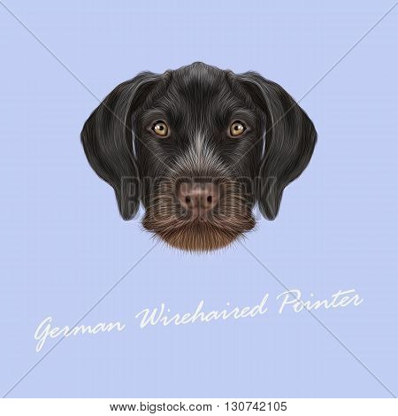 Vector Illustrated Portrait of German Wirehaired Pointer dog. Cute brown face of hunting dog on blue background.