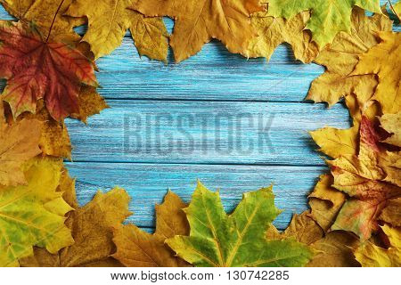 Autumn leafs on a blue wooden table, close up