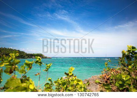 Beautiful azure sea, beach surrounded by greenery