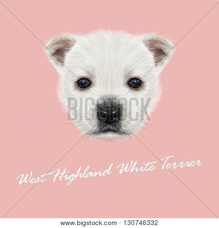Vector Illustrated Portrait of West Highland White Terrier. Cute white fluffy face of puppy on pink background.
