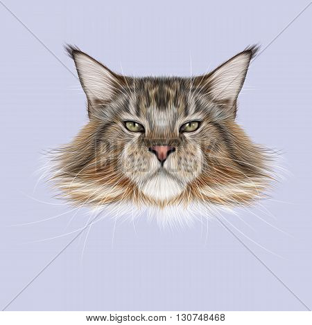 Illustrated Portrait of Maine Coon cat. Cute fluffy face of domestic cat on blue background.
