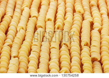 Italian uncooked wheat spiral pasta closeup sorted vertically.