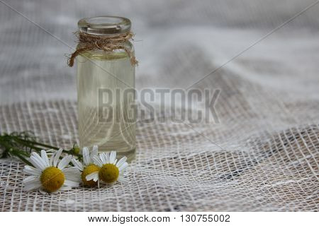 Jar with vegetable oil and chamomile flowers on a background of burlap.