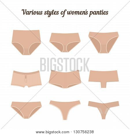 Various styles of women panties isolated on white background. Vector.