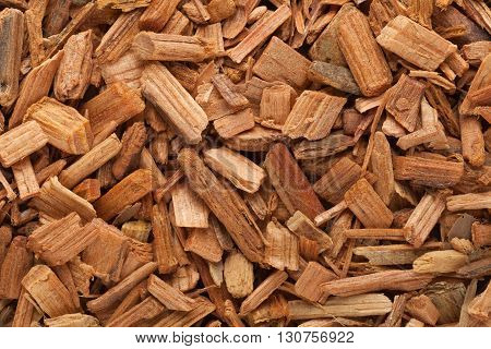 Organic Himalayan cedar or Devadar (Cedrus deodara) Chips. Macro close up background texture. Top view.