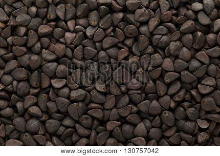 Organic Morning glory or kaladana (Ipomoea hederacea) seeds. Macro close up background texture. Top view.