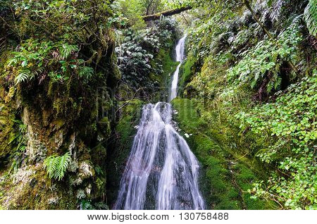 Secluded waterfall in rainforest. Fiorland National Park New Zealand