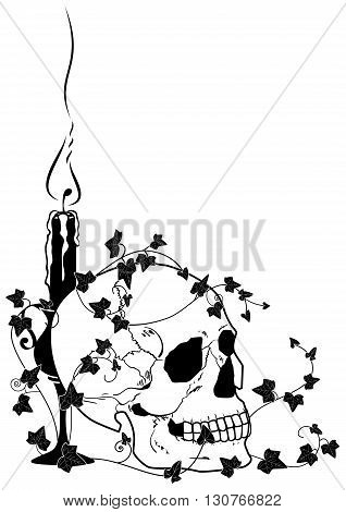vector illustration of skull candle and ivy in black and white