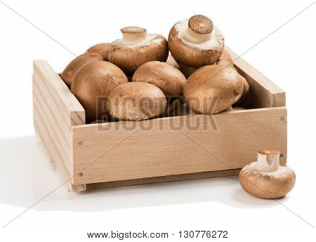 Brown champignon mushroom in a wooden box isolated on white background.